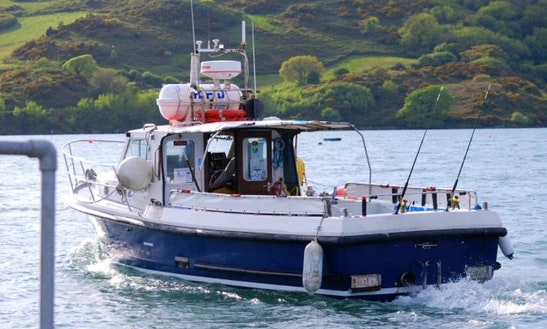 31' Head Boat Fishing Trips In Glandore, Ireland