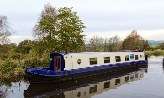 Tawny Narrow Boat Charter In Burnley