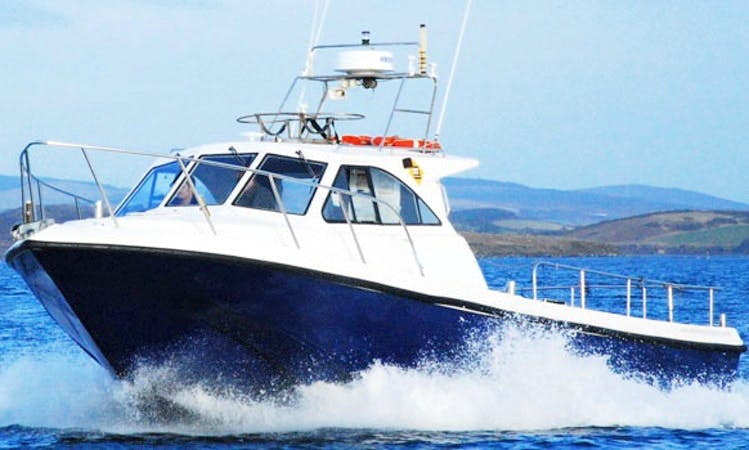 Sea Angling Charter Boat in Newport Co.Mayo