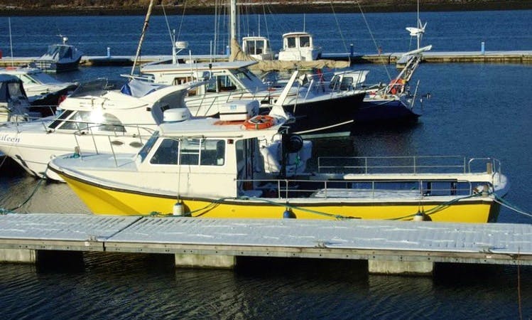 """34ft """"Offshore 105"""" Trawler Boat Fishing Charter In Cahersiveen, Kerry"""