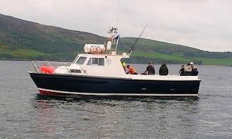 Enjoy Fishing in Donegal, Ireland on 38' Cuddy Cabin