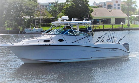 Offshore Fishing Charter In Lighthouse Point With Captain Joel