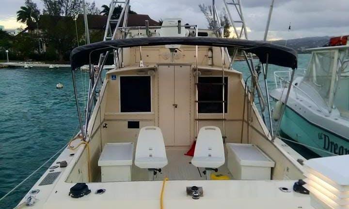 Montego Bay Fishing 3 Hours Deep Drop Inshore 100