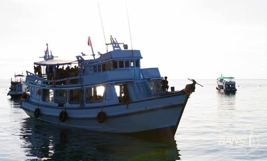 Certified Daily Diving Charter In Koh Tao, Thailand