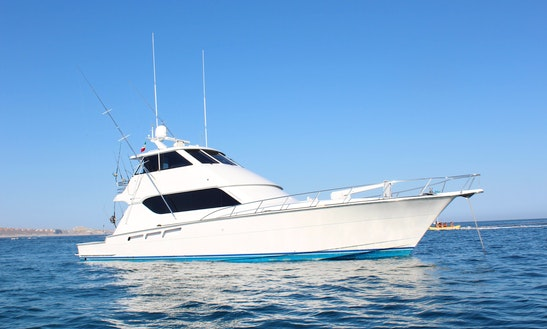 Hatteras 65′ Fishing Charter In Cabo San Lucas With Strictly Business