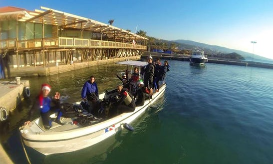 Take Scuba Diving Courses In Lebanon, Lebanon