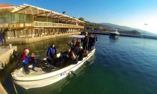 Take Scuba Diving Courses In Lebanon, Lebanon