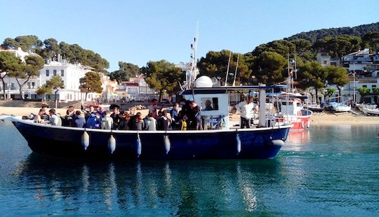 Specialty Dives & Beginner Lessons And Tours In Llafranc