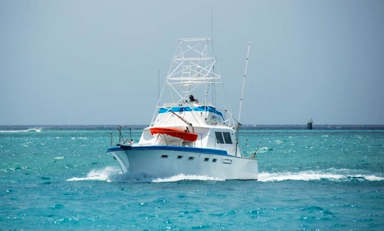 Exciting Fishing Trip On 42' Hatteras Sportfisherman In Aruba With Capt. Peter