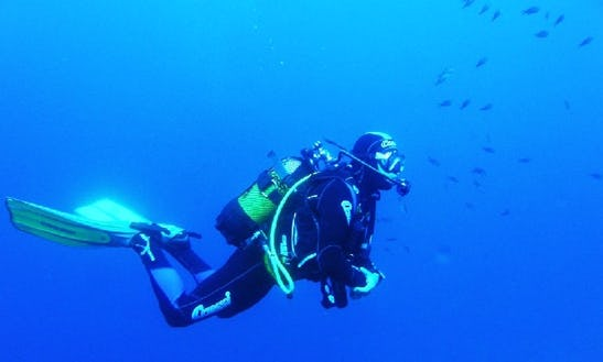 Enjoy Diving Courses In Tías, Canarias