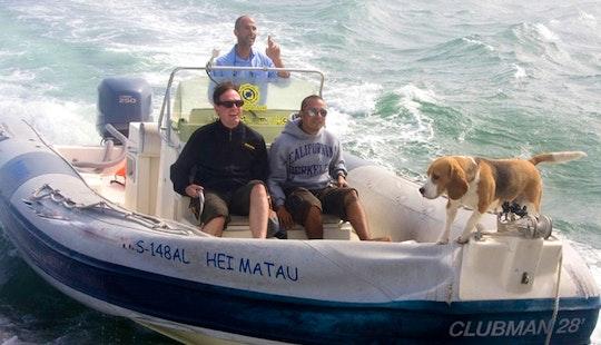 'hei Matau' Semi-rigid Rib Boat Eco-tours In Portugal