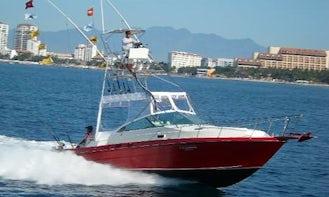 Private Crewed Fishing Adventure on Sea Ray 34' Cuddy Cabin
