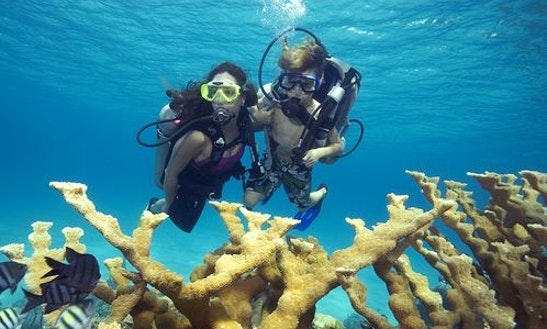 Enjoy Diving Trips And Lessons In Dunmore Town, Bahamas