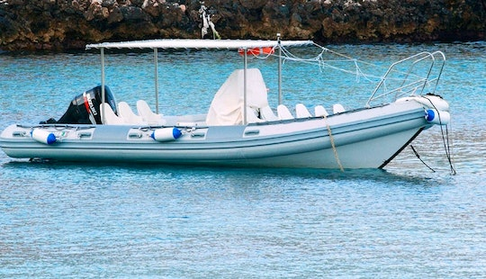 Exclusive Guided Excursion Aboard 25' Rib For 12 Person In Egadi Islands With Edoardo