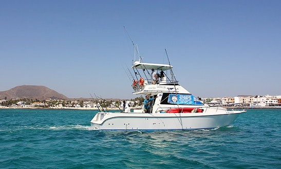 Enjoy Fishing In La Oliva, Spain On 39' Barracuda Power Catamaran