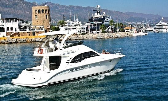 Sea Ray 525 Motor Yacht Rental In Marbella