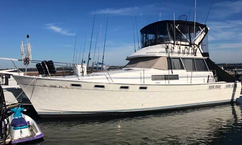 Fishing Charter On 38' Bay Liner Sport Fishing Yacht In Erie, Pennsylvania