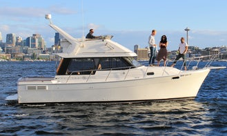 Lake Union and Chill with Bayliner 3288 Boat