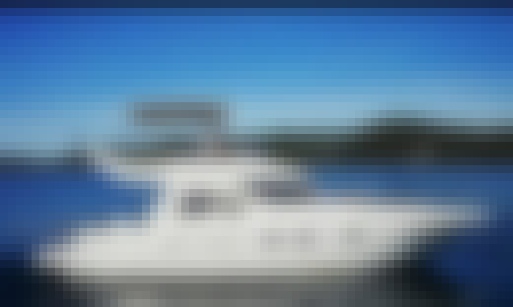 Charter 40' Cranchi Flybridge Motor Yacht in Budva, Montenegro