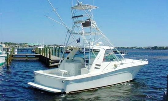 40' Sport Fisherman Fishing Trips In Madeira Beach