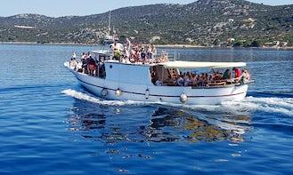 Dolphin Boat Excursion in Martin