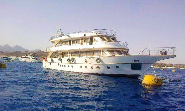 Charter a Luxury Motor Yacht for $1200 a day in South Sinai, Egypt