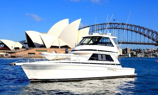 Cruise Sydney Harbour On 48'