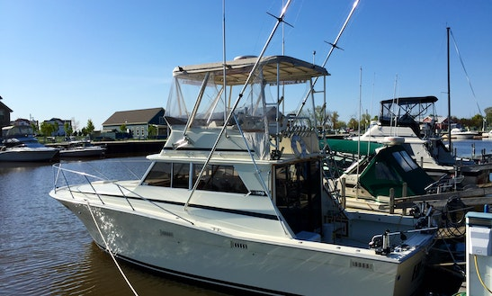 Sport Fishing Charter With Captain Bryan In Sheboygan, Wisconsin