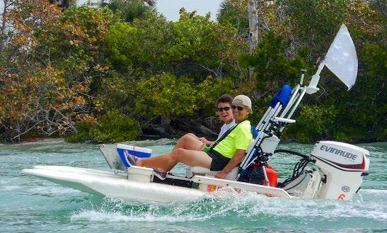 Mini Catamaran Tours In Englewood, Florida