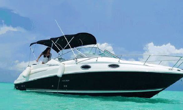 Charter Sea Ray 27 Motor Yacht in Cancún, Mexico
