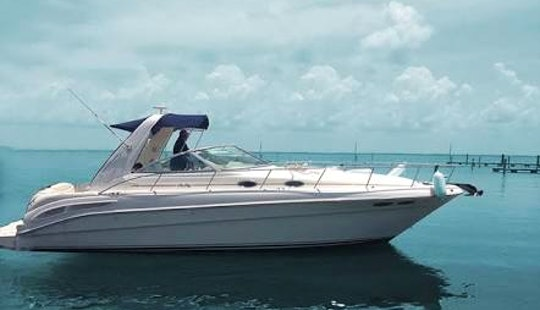 Charter Formula 36 Motor Yacht In Cancún, Mexico