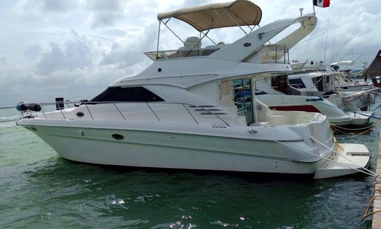 Charter Sea Ray 47 Motor Yacht In Cancún, Mexico