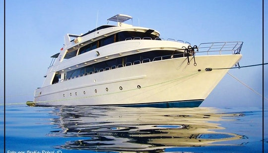 The 98' Divers Yacht Charter In Egypt