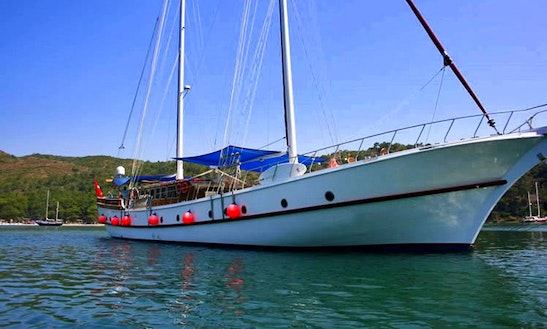 'parlak. M' Gulet Day Charter In Istanbul