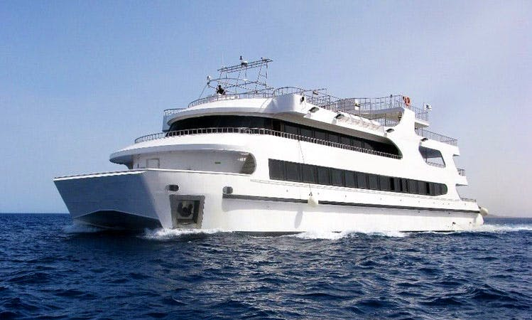 Charter 131' Pearl Power Catamaran in Red Sea Governorate, Egypt