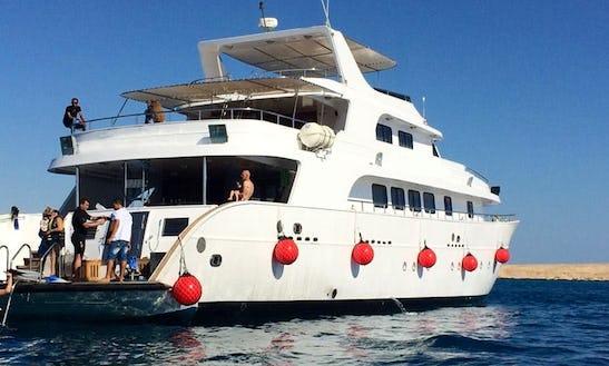 Bella Liveboard Safariboat