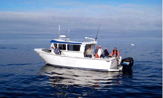 Bottom And Halibut Fishing Charter On 6 Person Fishing Boat In Gold Beach, Oregon