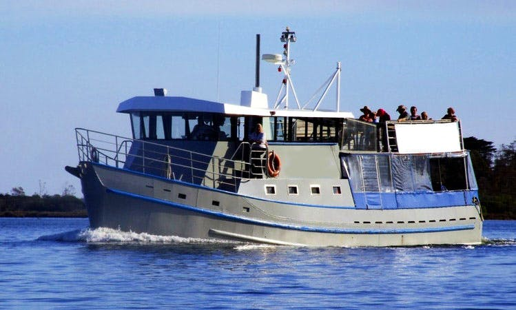 Eco Tour Charter Boat in Lakes Entrance, Victoria