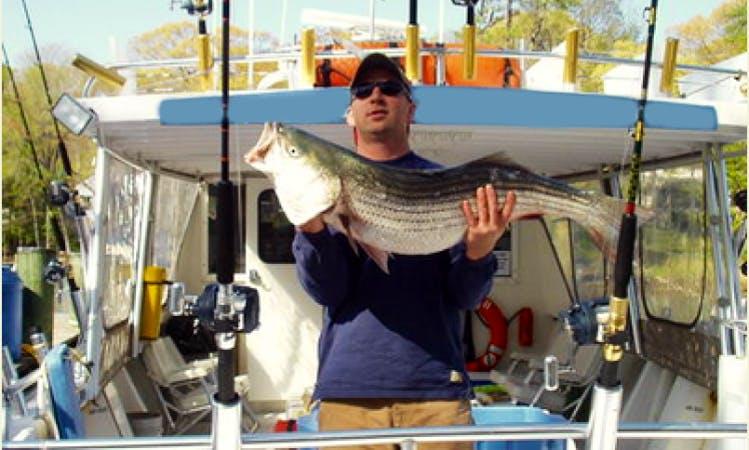 Fishing Charters in Chesapeake Bay