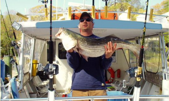 Fishing Charters In Chesapeake Bay