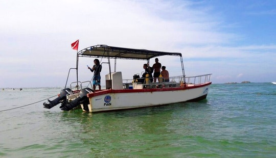 Enjoy Diving Trips & Courses In Hikkaduwa, Southern Province