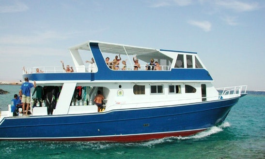 Dive Point Charter In Egypt