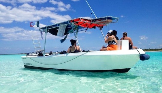 Enjoy Private Snorkeling Tour In Cozumel, Mexico