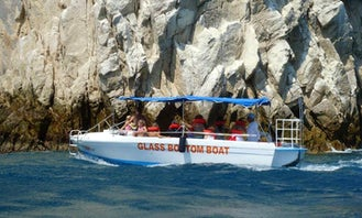 Whale Watching Trips in El Paraje, Mexico