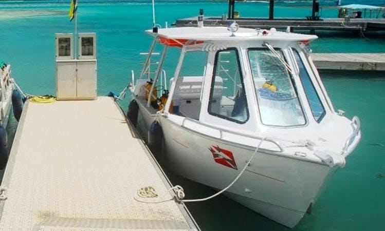 Dive Boat In Tikehau