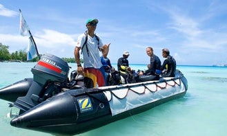 RIB Diving Trips in Avatoru, French Polynesia