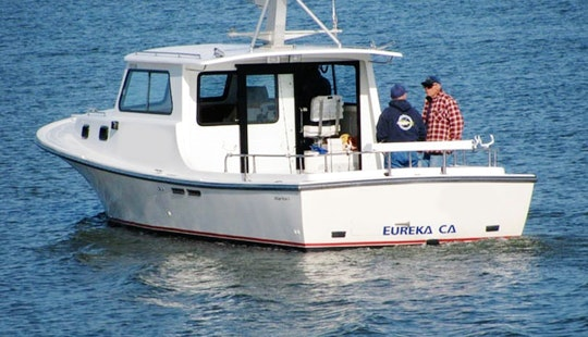 36' Sport Fishing Charter In Eureka