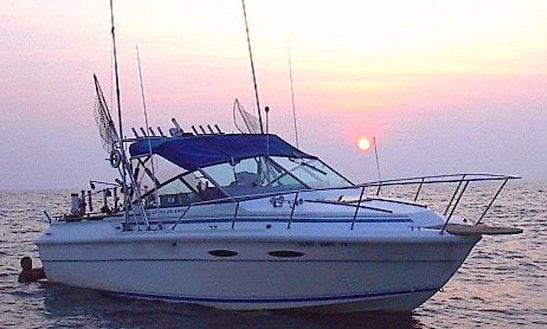 26' Cuddy Cabin Fishing Charters In Dunkirk, New York