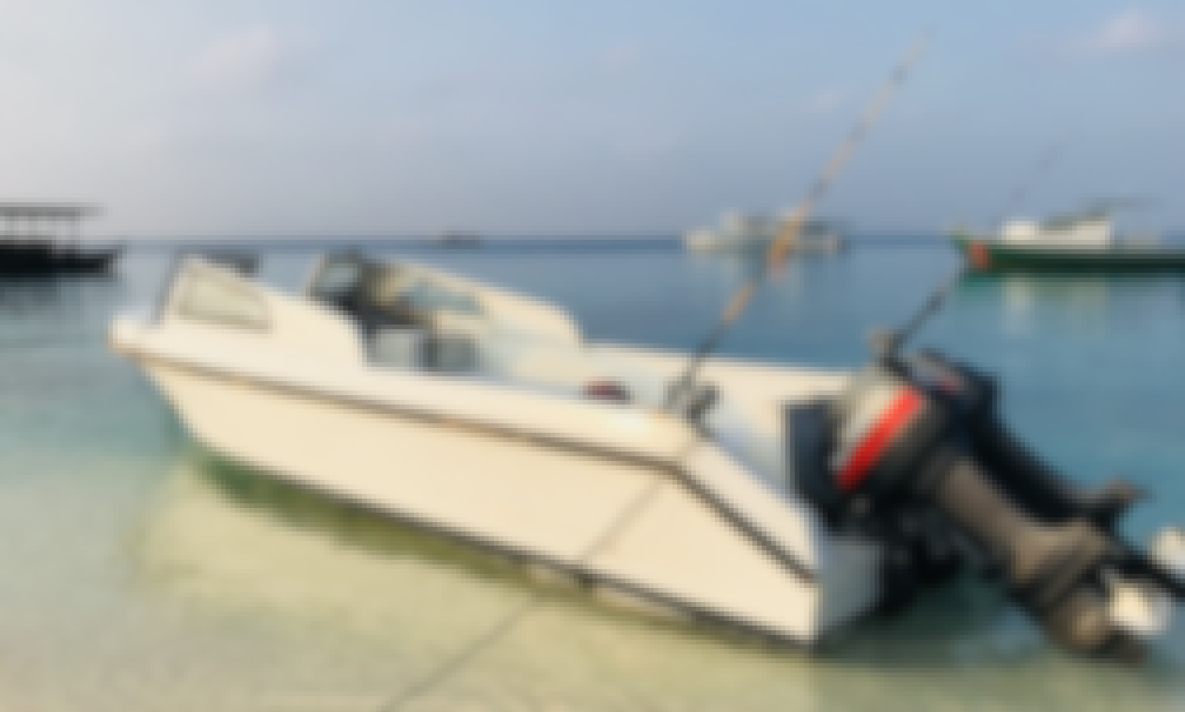Sport Fisherman in Fulidhoo, Maldives for private charter