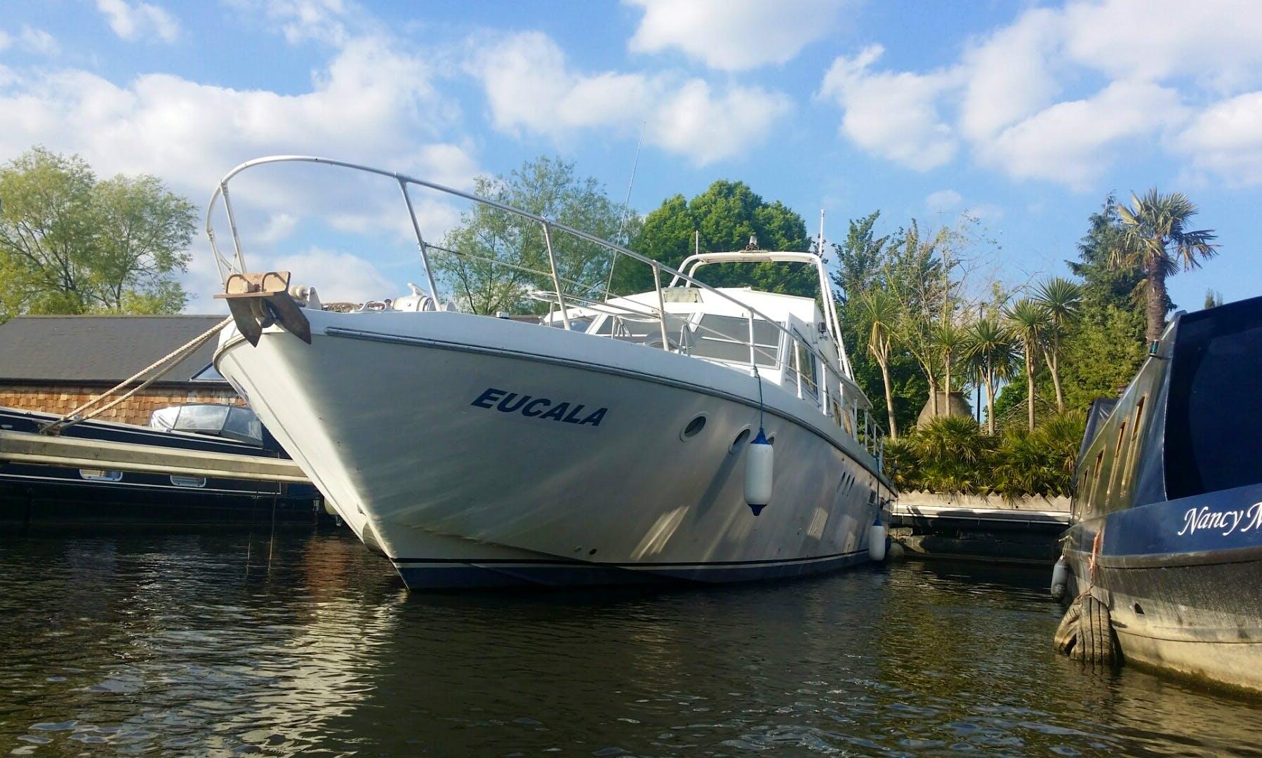 Motor Yacht rental in Molesey